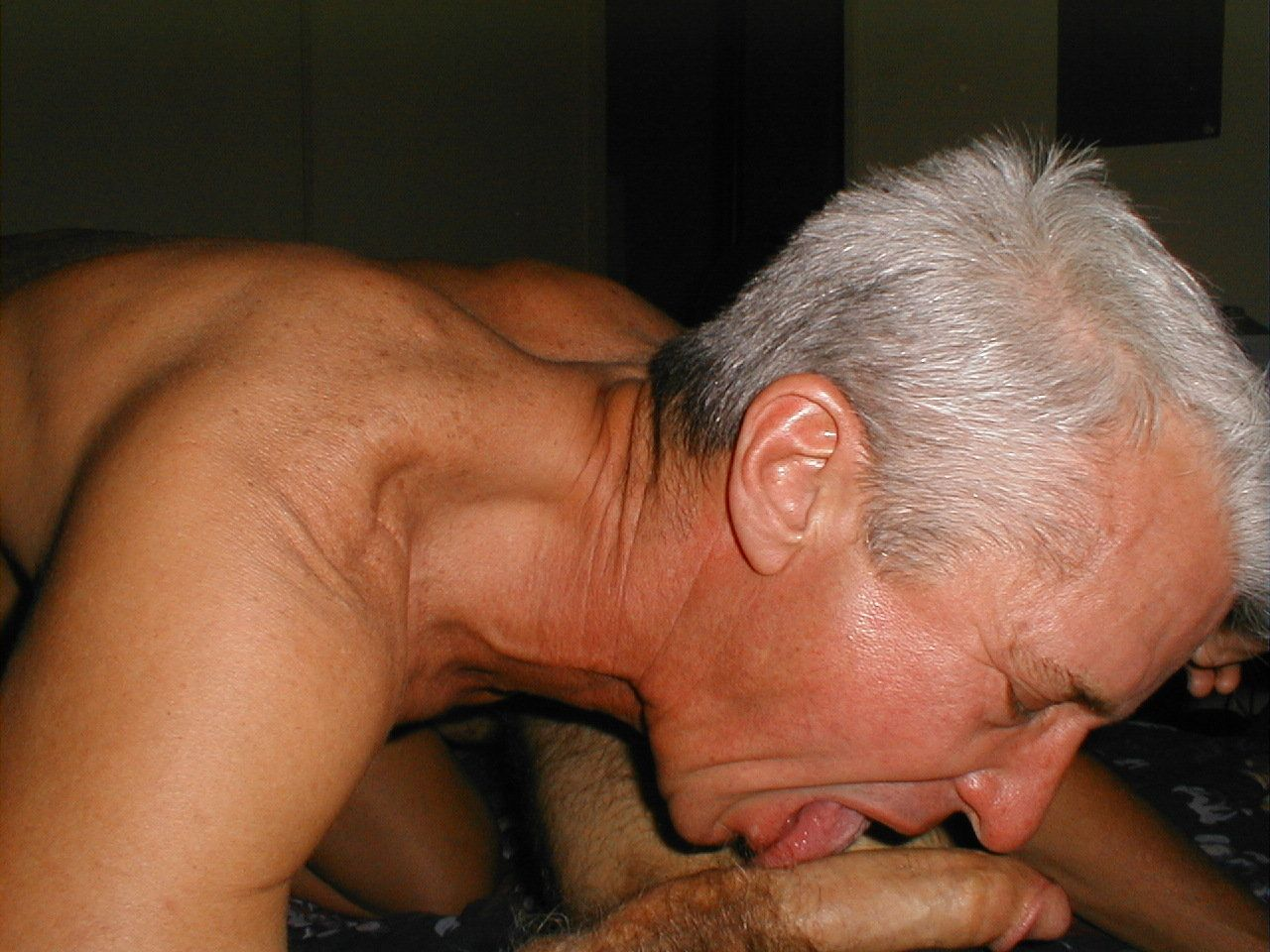 Dick licking gay bear goes down on