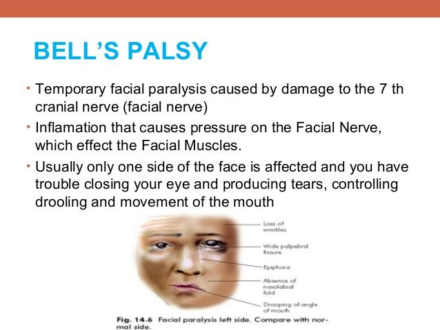 Facial nerve and eye closure