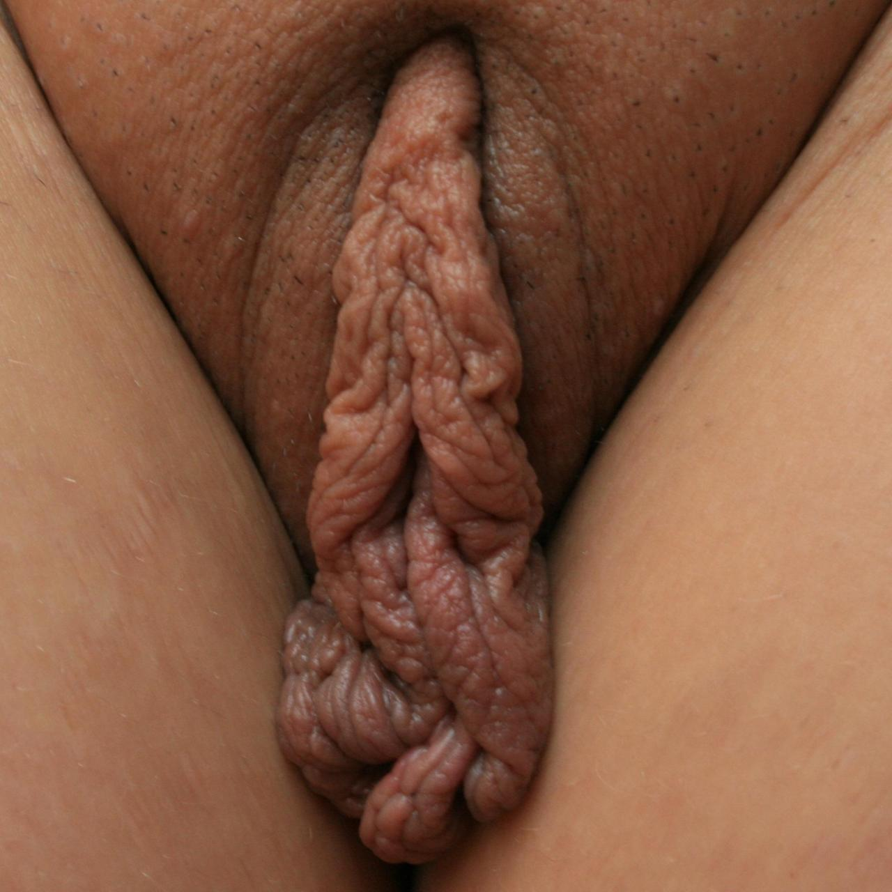 best of Pics Big vagina labia