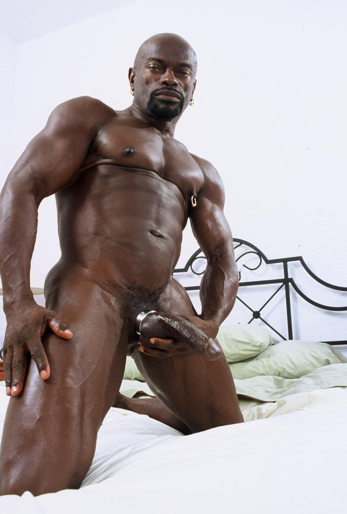 Buster reccomend Free gallery gay black cock