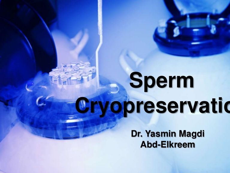 best of Of sperm Vitrification