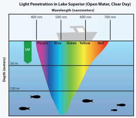 Infiniti reccomend Color of light that penetrates seawater