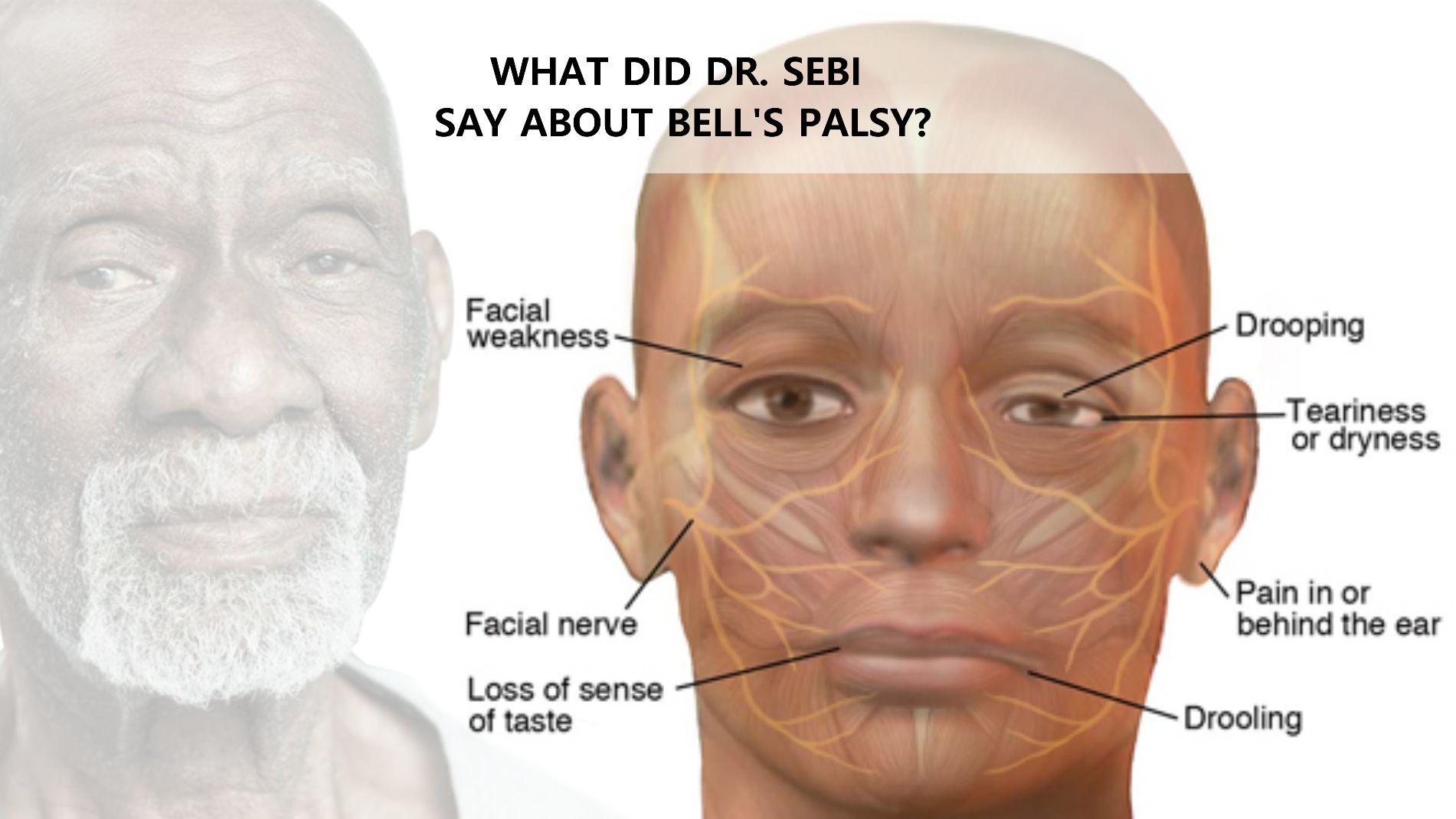 Tribune reccomend Los angeles facial paralysis