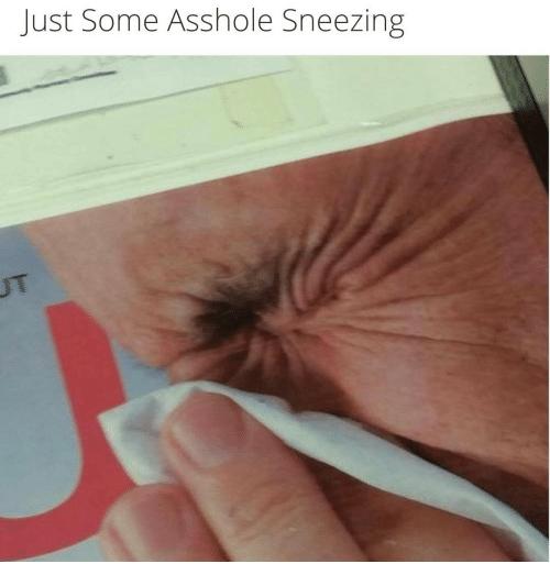 best of Ass hole Human