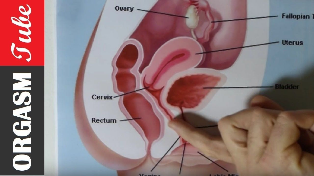 G spot orgasm demonstration video