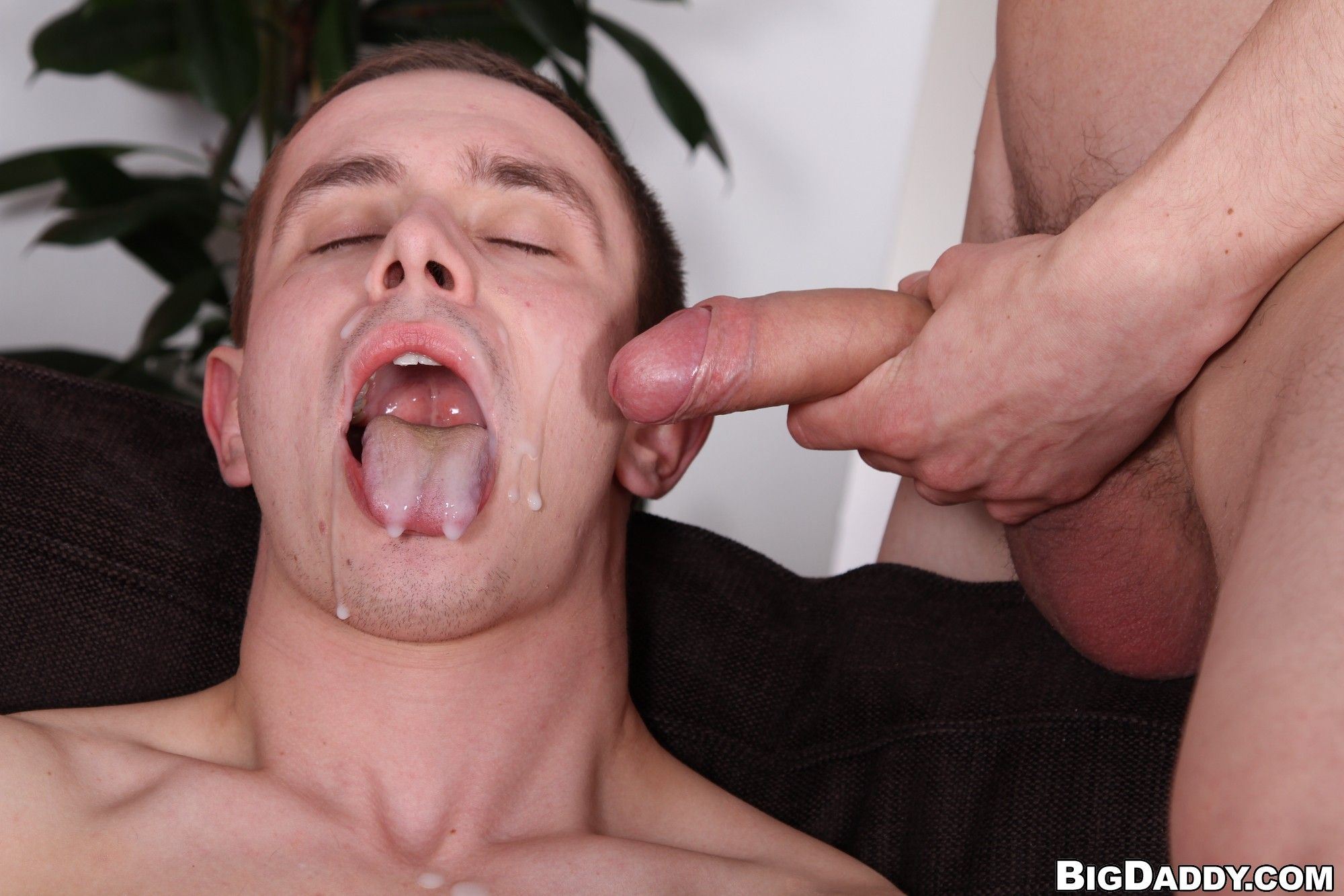 best of Gay Dick lick