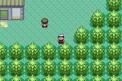 Pokemon sapphire rom hustler