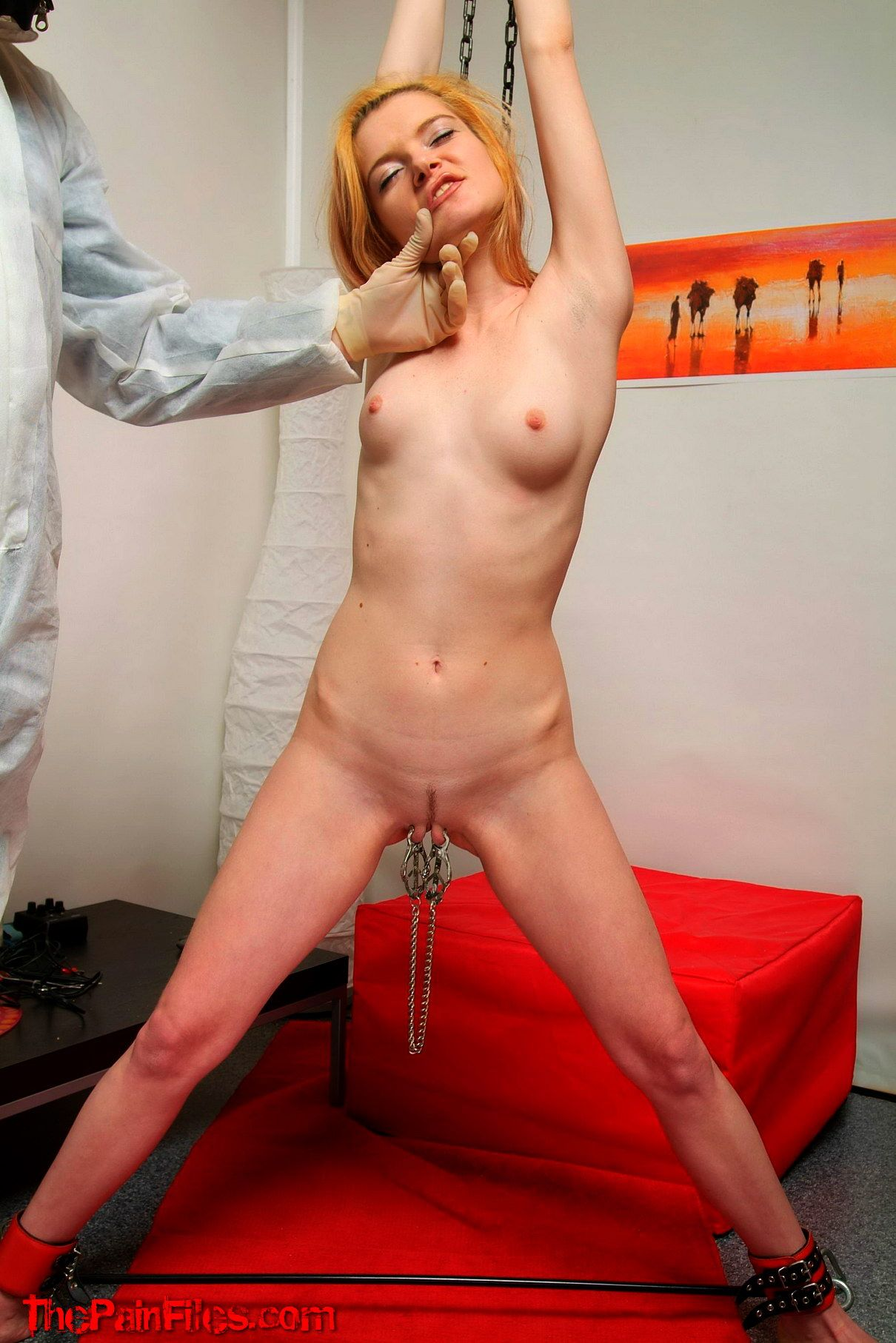 Blonde bdsm tgp