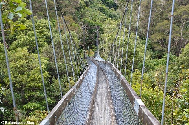best of Swinging survive Snaps 5 bridge