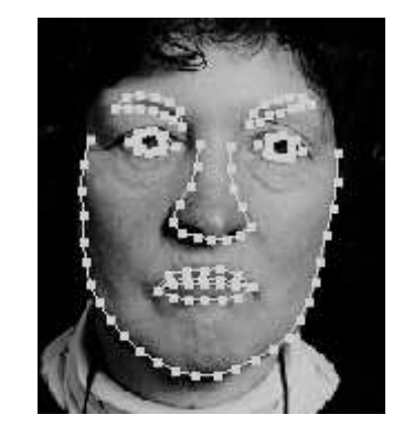 Facial recognition online