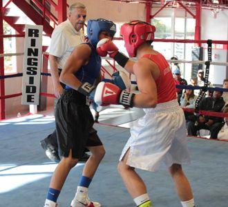 Subwoofer reccomend Golden gloves amateur boxing club