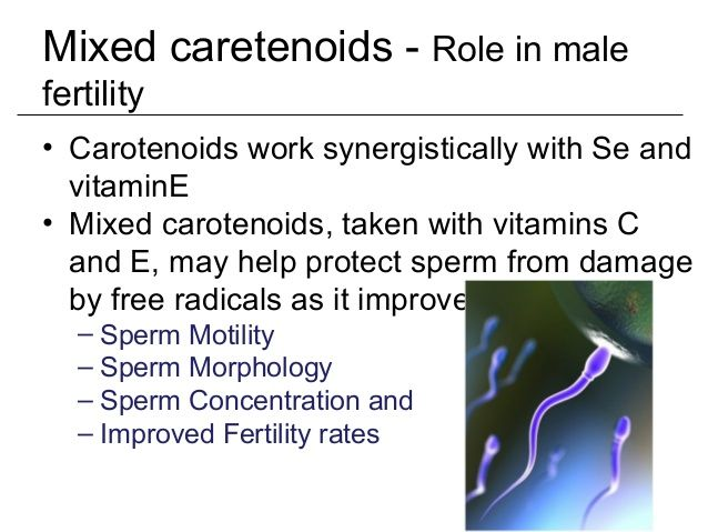 best of Morphology sperm Vitamins and