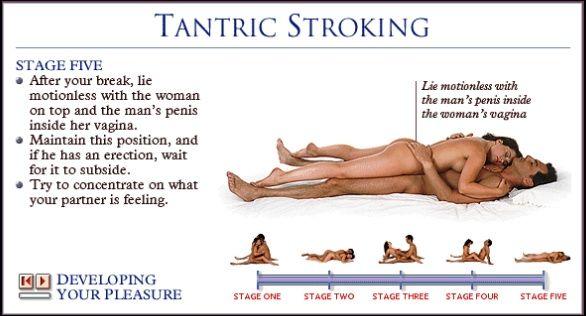Sexual intercourse tutorial