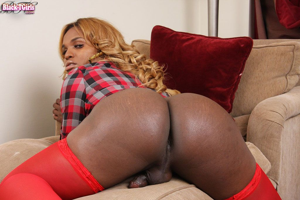 Black bbw shemale threesomes