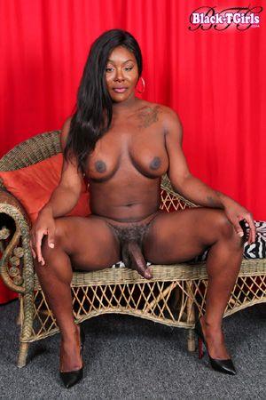 Black trannies with big tits