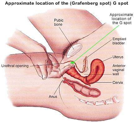 Clitoris stimulation real