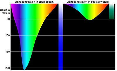 Color of light that penetrates seawater