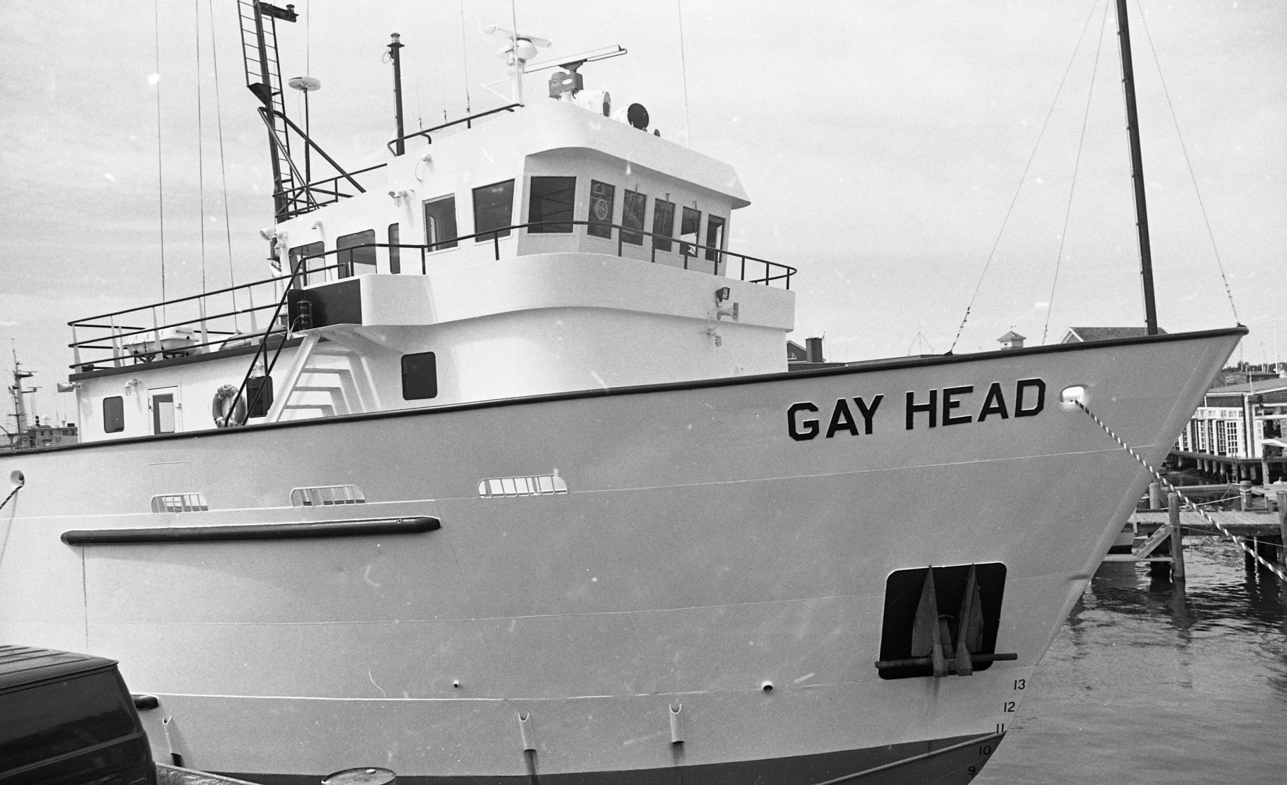 Gay head woods hole