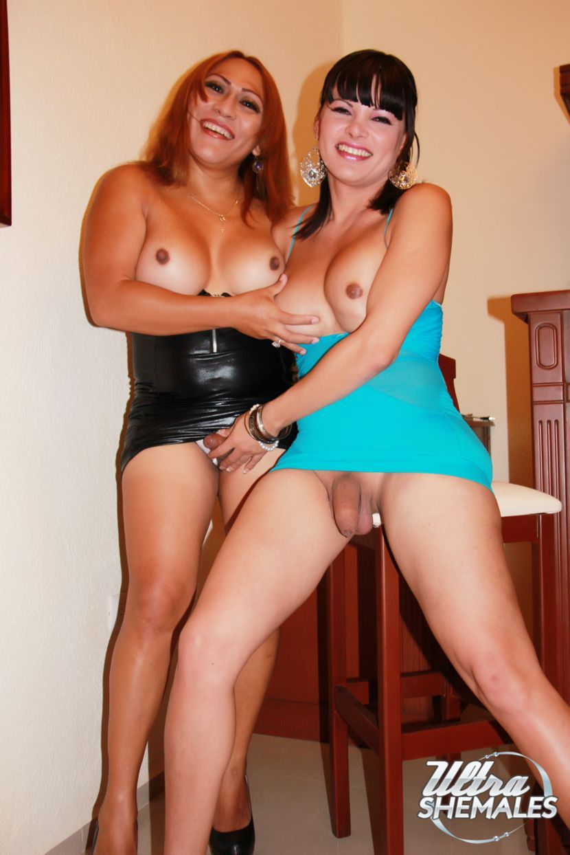 Shemale party galleries