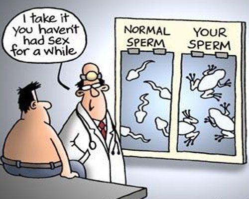 Sperm bank joke
